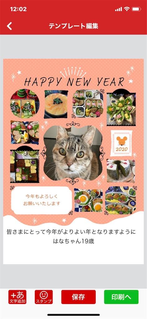 f:id:hananekochang:20200102123156j:image