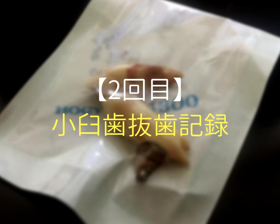 f:id:hanano_mani_0125:20171113224114p:plain