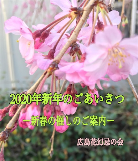 f:id:hananomaboroshi:20200103124927j:image