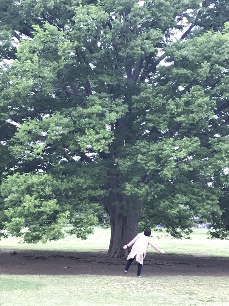 f:id:hanasakareisan:20180424020131j:image