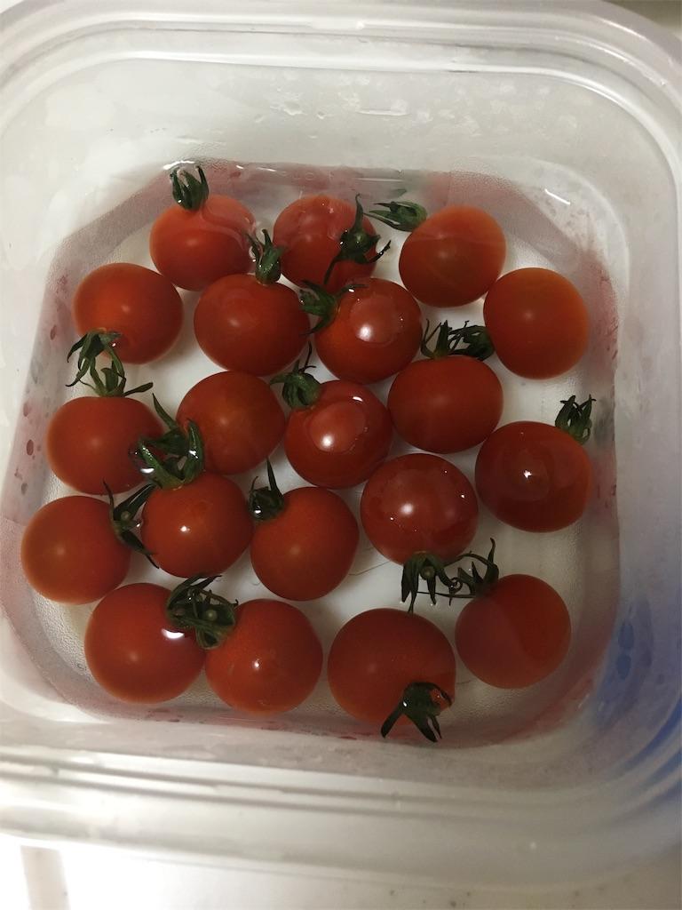 プチトマトの保存方法
