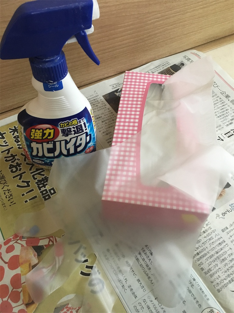 f:id:hanasan_okiraku:20190611140103j:image