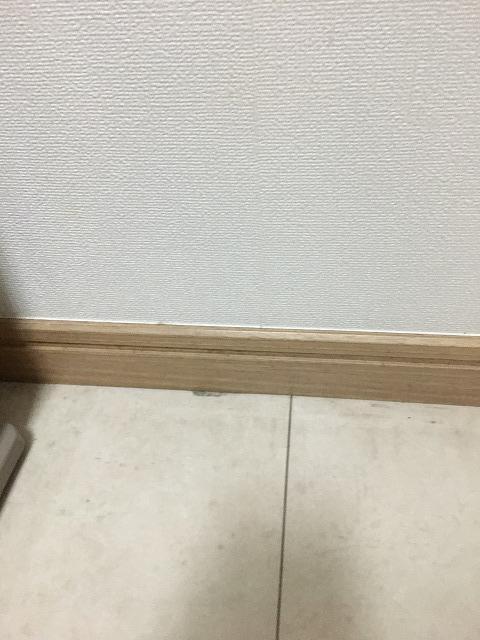 f:id:hanasan_okiraku:20190628141706j:plain