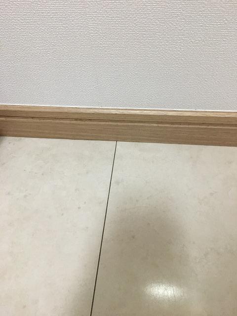 f:id:hanasan_okiraku:20190628141726j:plain