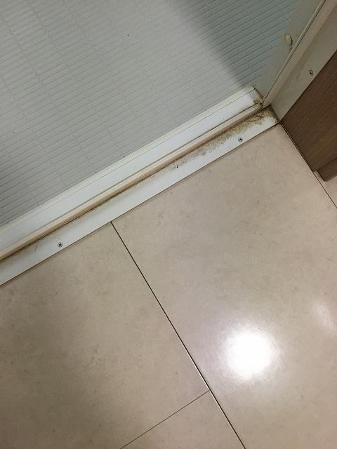 掃除前の浴室ドアのゴムパッキン2