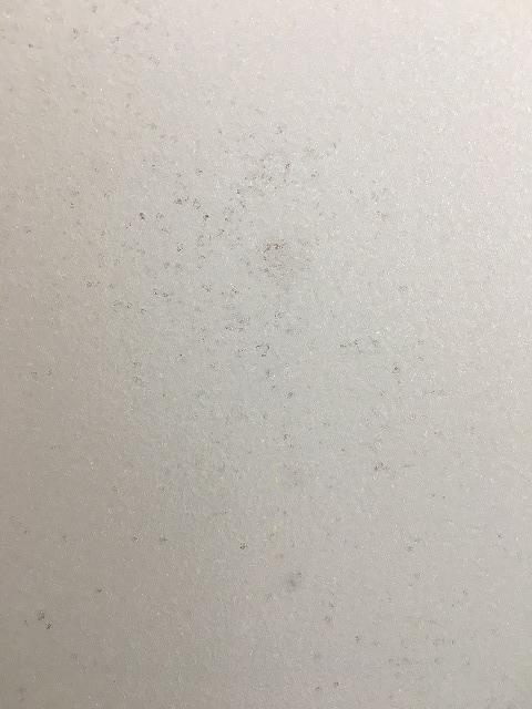 浴室ドアのガラス部分の黒カビ