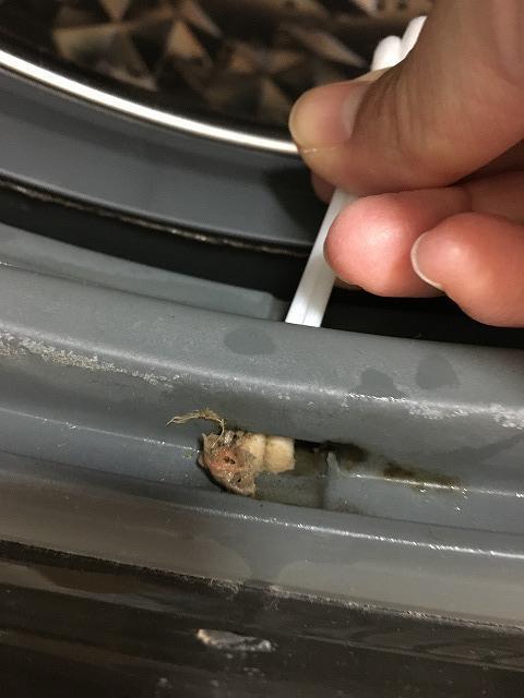 洗濯機のゴムパッキンの穴掃除2