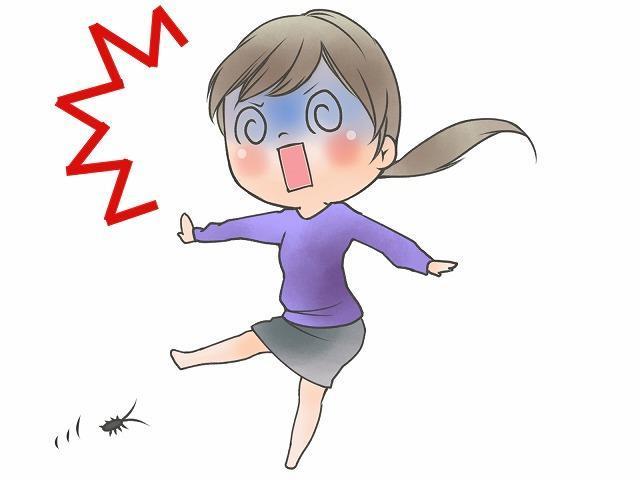 ゴキブリが出た!!