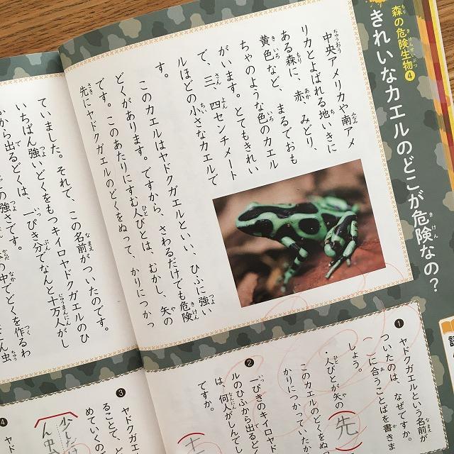 危険生物のおはなし・きれいなカエルのどこが危険なの?