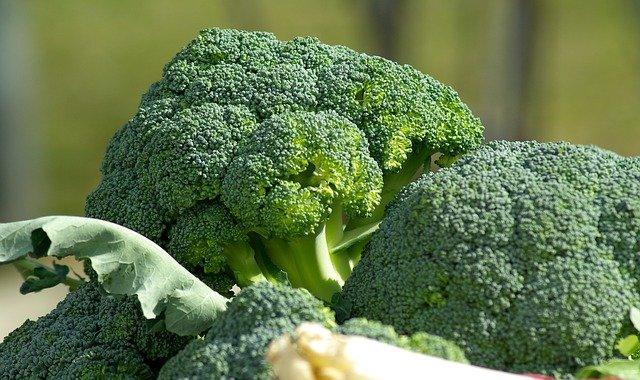 ダイエット中の間食を抑えるならブロッコリーが最強!