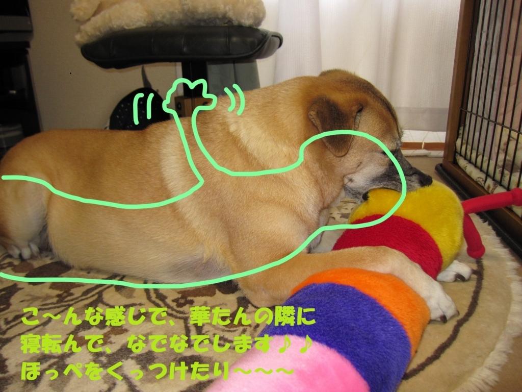 f:id:hanatanmama:20171229121342j:plain