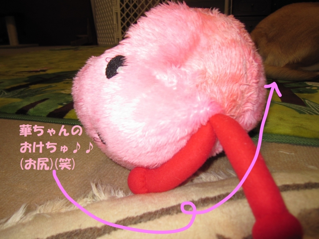 f:id:hanatanmama:20180202154845j:plain