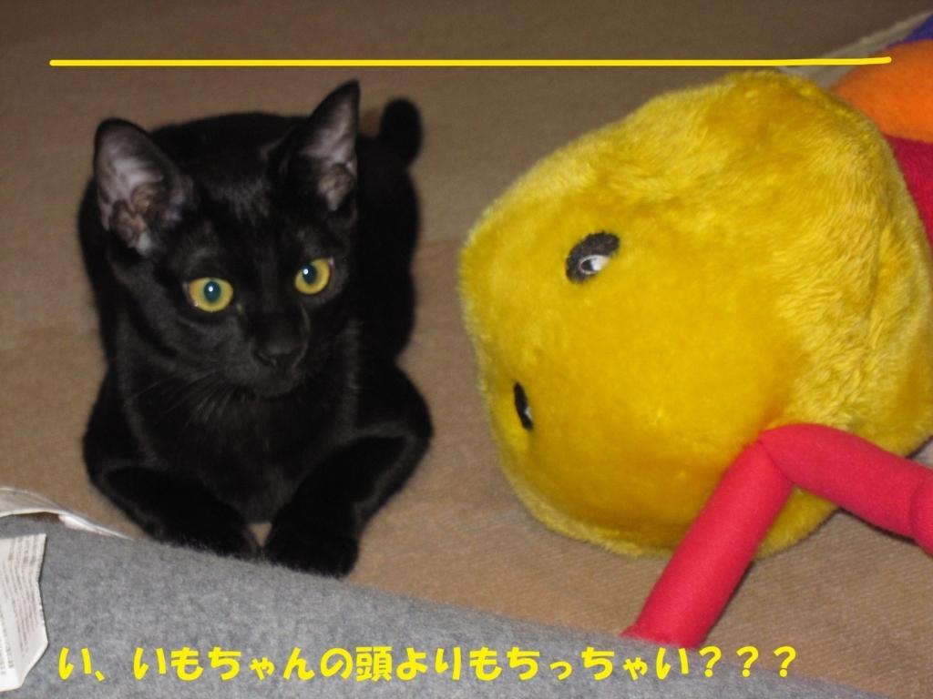 f:id:hanatanmama:20180404145935j:plain