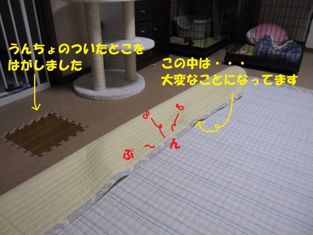 f:id:hanatanmama:20180720162428j:plain