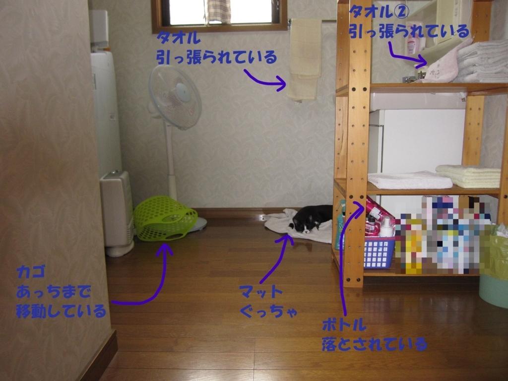 f:id:hanatanmama:20180727153436j:plain