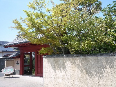 f:id:hanatokaori:20110509125328j:image:w360:right
