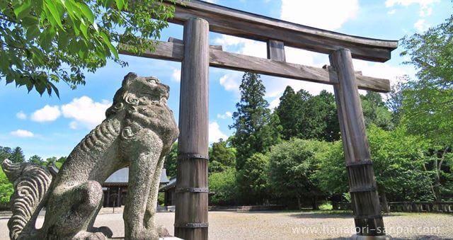 吉野神宮の鳥居と狛犬