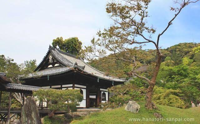 京都の高台寺