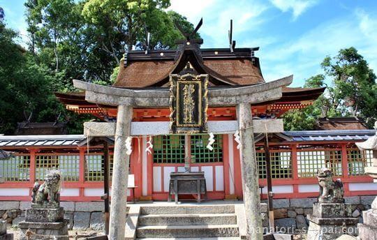 錦織神社の本殿
