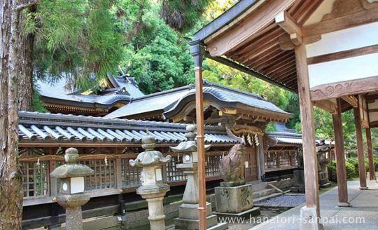 美具久留御魂神社の本殿