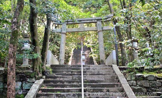 美具久留御魂神社の石段