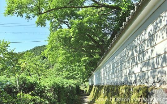 延命寺の白壁