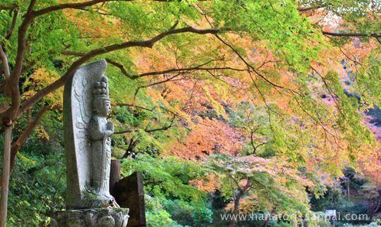 延命寺の紅葉と石仏
