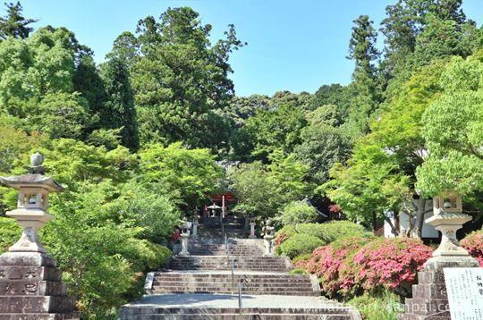 観心寺の参道