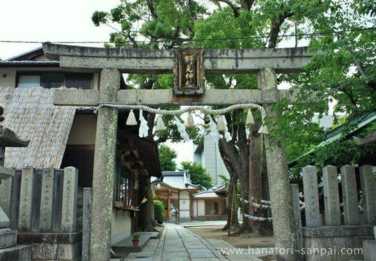 野見神社の鳥居