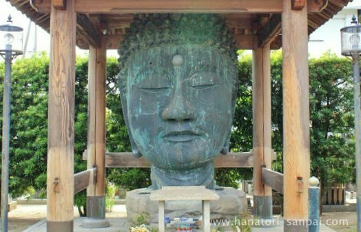 和歌山の無量光寺の仏頭