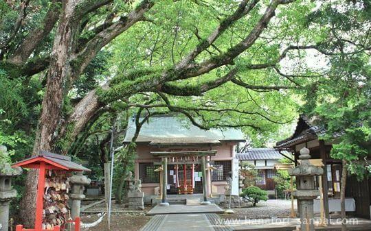 和歌山の刺田比古神社