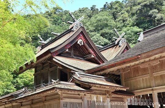 美保神社の社殿の屋根
