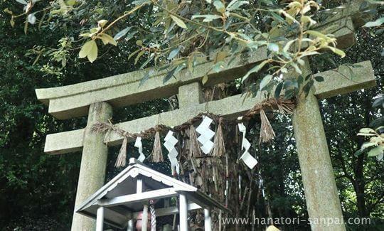 丹生酒殿神社の鎌八幡の鳥居