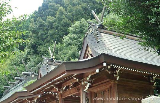 丹生酒殿神社の本殿