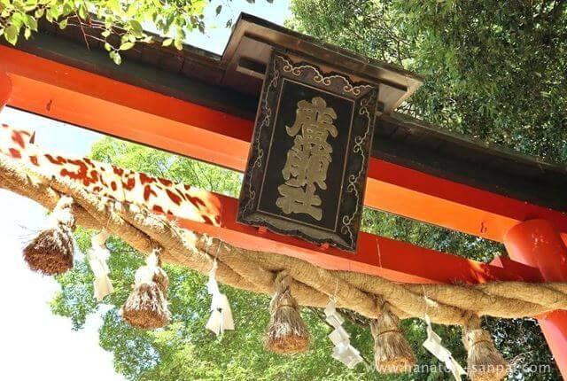 奈良の廣瀬大社