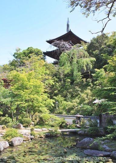 當麻寺中之坊の庭園