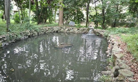 鏡作坐天照御魂神社の鏡池