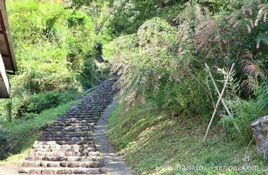 天石立神社への石段
