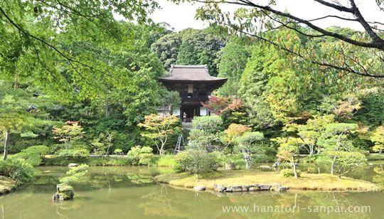 円成寺の境内