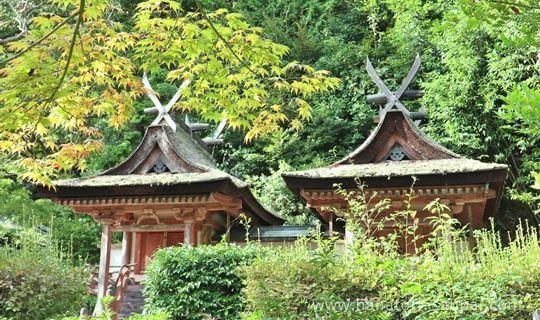 円成寺の春日堂と白山堂