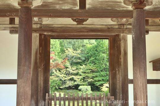 円成寺楼門からの眺め