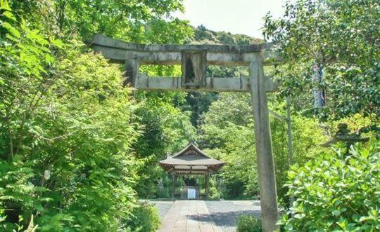 大豊神社の鳥居