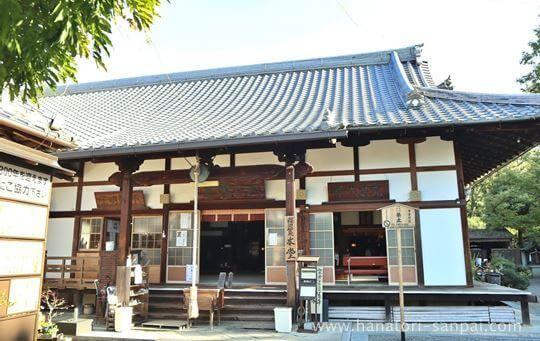 戒光寺の本堂