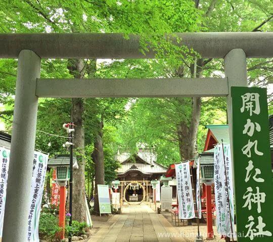 田無神社の境内