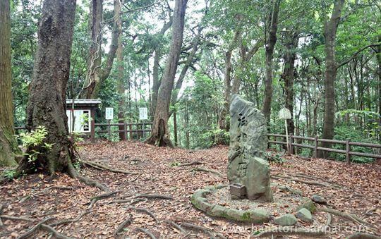 談山神社の談い山