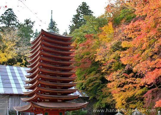 紅葉の談山神社境内