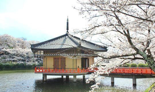 奈良の阿倍文殊院