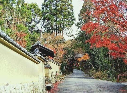 赤山禅院の門