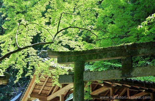 奈良の等彌神社