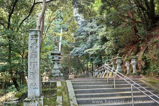 等彌神社の参道
